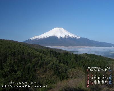 2008-11b.jpg