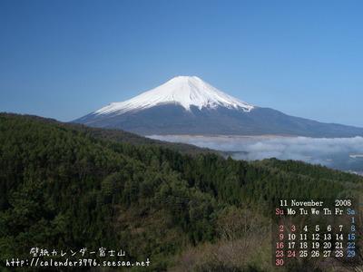 2008-11m.jpg